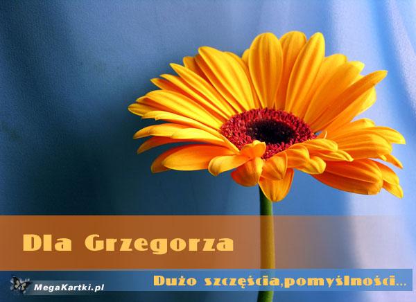Dla Grzegorza