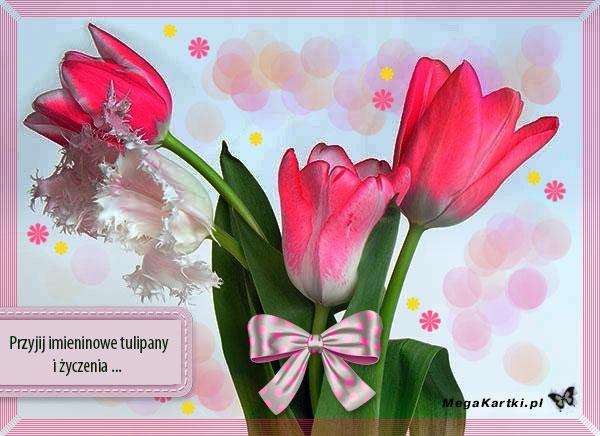 Imieninowe tulipany