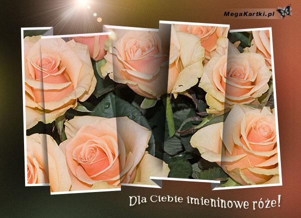 Imieninowe róże