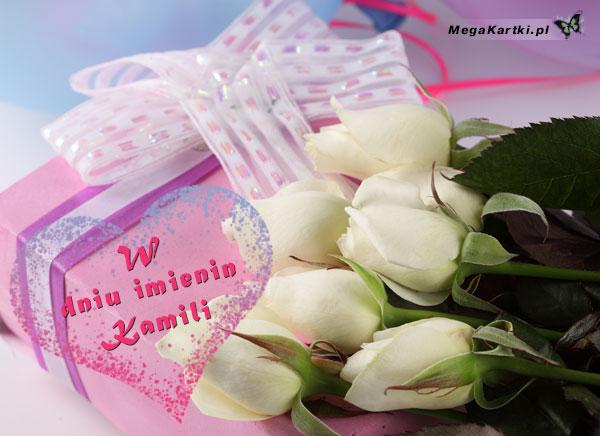 Dla Kamili