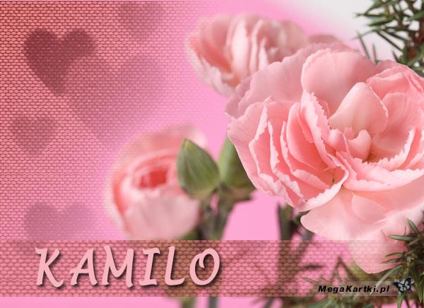 Kwiaty dla Kamili