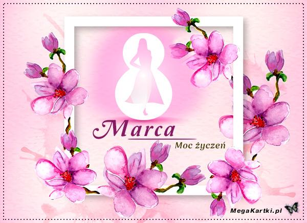 8 Marca