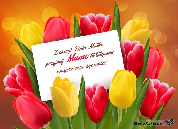 Przyjmij Mamo te tulipany