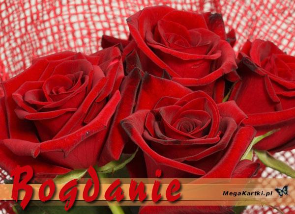Imieniny Bogdana