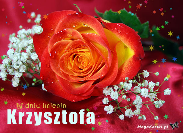 W dniu imienin Krzysztofa