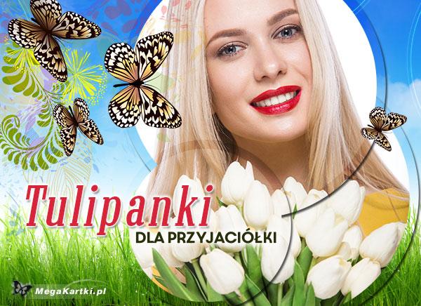 Tulipanki dla przyjaciółki
