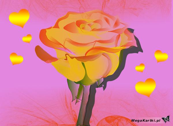 Satynowa róża