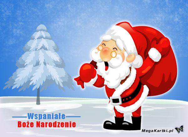 Wspaniałe Boże Narodzenie