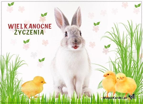 Zwierzaki Wielkanocne